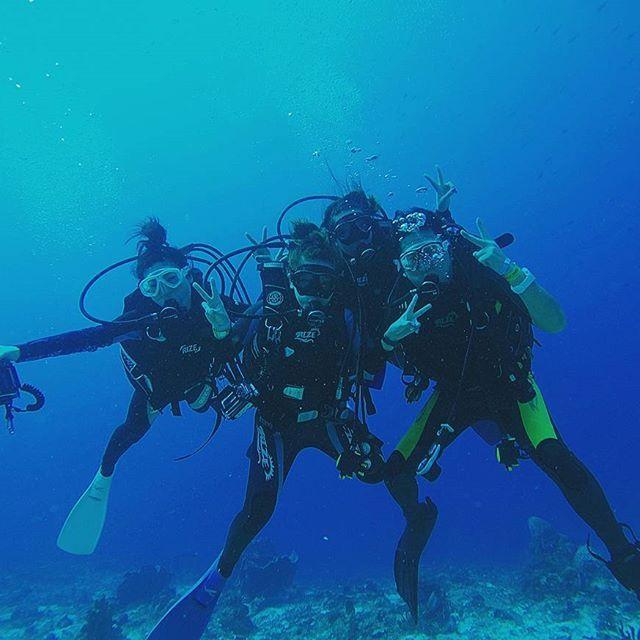 【sadanarishozo】さんのInstagramをピンしています。 《Good morning!メキシコの青い海をバックに記念撮影したものです☆ もうすぐ皆さんに会える時がきます😄 #diving #ダイビング#divingtrip #カリブ海#caribbean#diver #friends #仲間#beautiful #awesome #メキシコ#カンクン#mexico #cancun #リゾート#resort #バカンス#sea#ocean #marine #海#underwater #uwphotography #instatravel #instanature #gopro #goprojp #hero4 #爽やか》