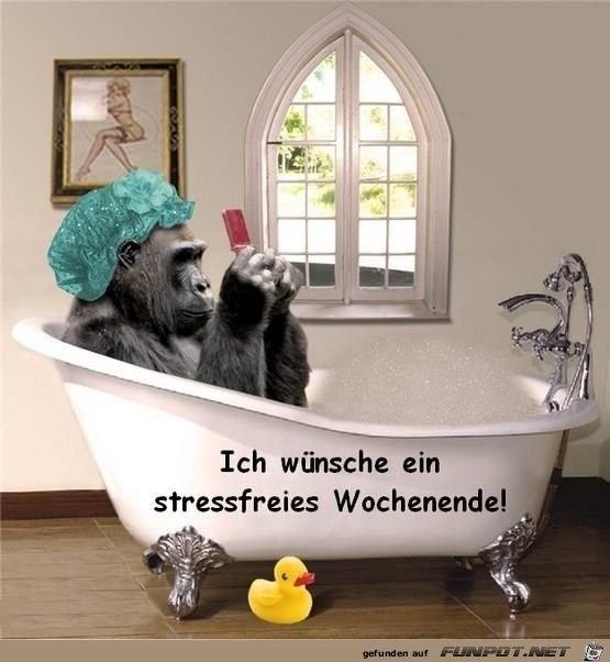stressfreies Wochenende