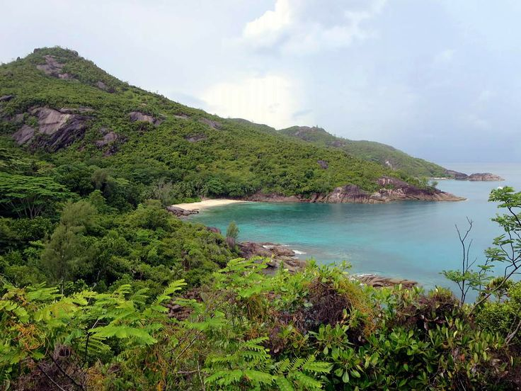 The 2.4-kilometer trail from Danzil to Anse Major on Mahe Island, Seychelles, is a scenic feast.