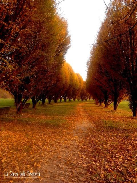Milano, Hinterland: Parco Nord by Rita Bellussi, La Danza della Creatività http://ladanzadellacreativitahome.blogspot.it/
