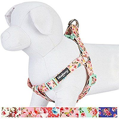 Blueberry Pet Step-in Spring Scent Inspired Rose and Butterfly Print Pastel Pink Dog Harness, Chest Girth 67cm-98cm, Large, Adjustable Harnesses for Dogs