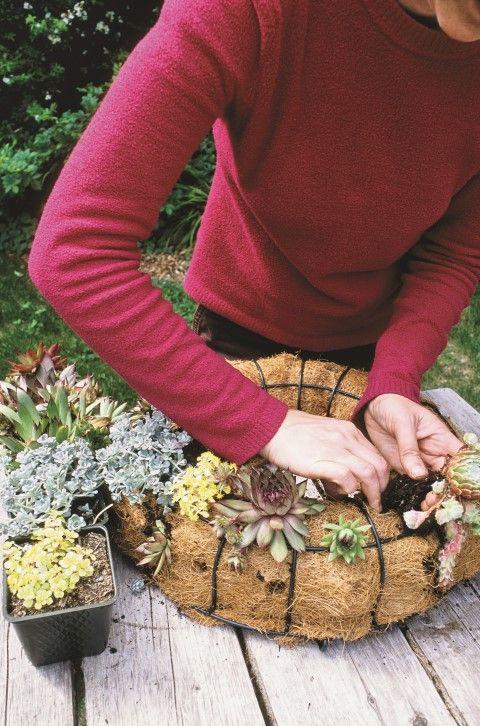 - DIY instruções grinalda suculentas - siga o tutorial passo -a-passo para fazer uma coroa de flores lindo suculenta neste verão. É mais fácil do que parece!