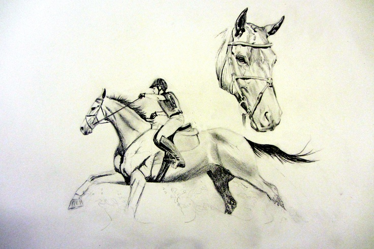 A special gift for my daughter's riding instructor, Sara Sellmer.  This is her horse Ari Gold