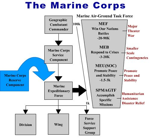 Chain of command in the army essay