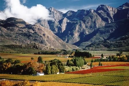 Hexriver Valley: Wine farms
