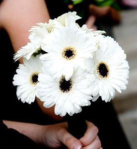 White gerbera daisies make a simple and charming brodesmaid bouquet for a black and white theme wedding.