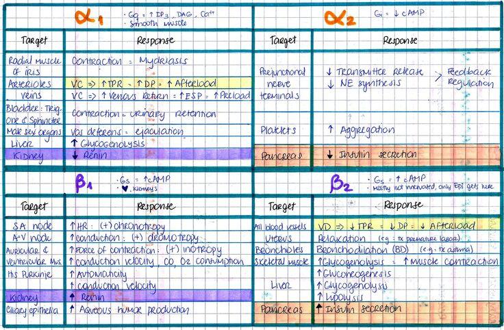 The contents of an EMT brain — mynotes4usmle: ALPHA & BETA RECEPTORS I love...