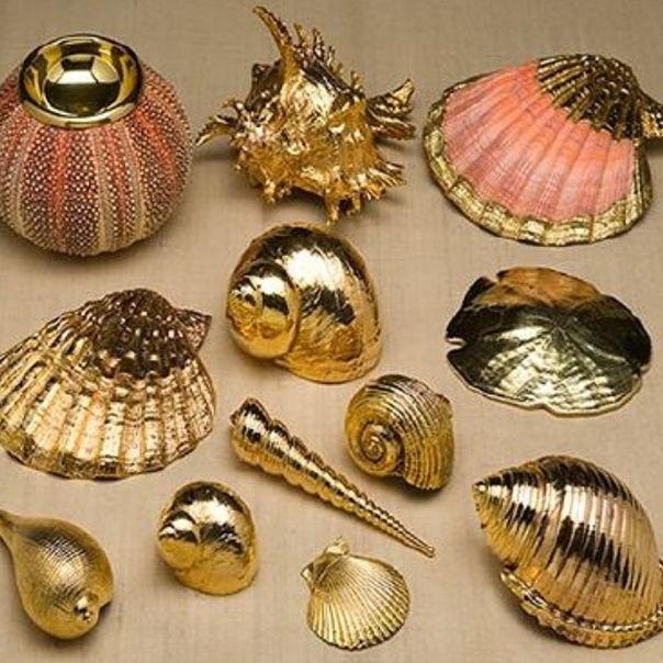 gold dipped seashells