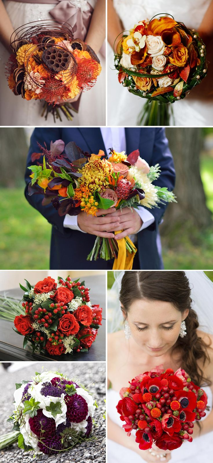Blumen Im November Claudia Blumen Im November Reportage Galerie Tr