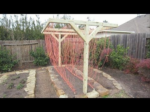 Mittleider Gardening Method - YouTube