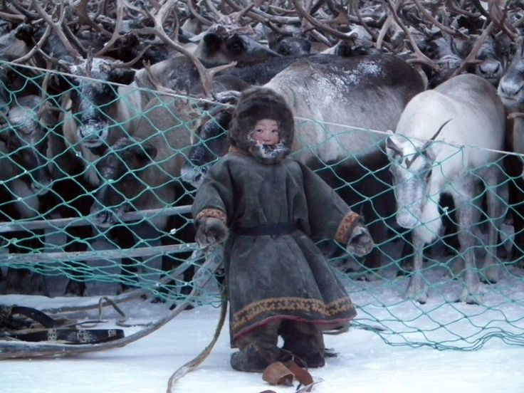 nenets children yamal peninsula - photo #7