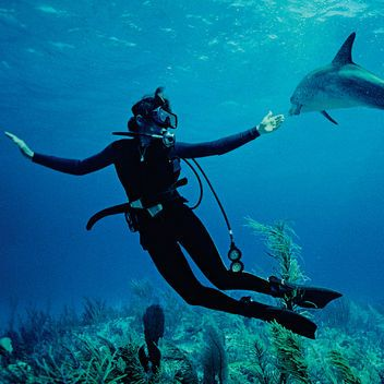 Sylvia Earle Is a Glamour Woman of the Year for 2014: Glamour.com