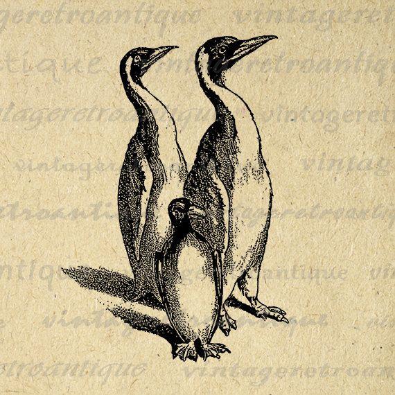 Printable Graphic Penguins Image Bird by VintageRetroAntique
