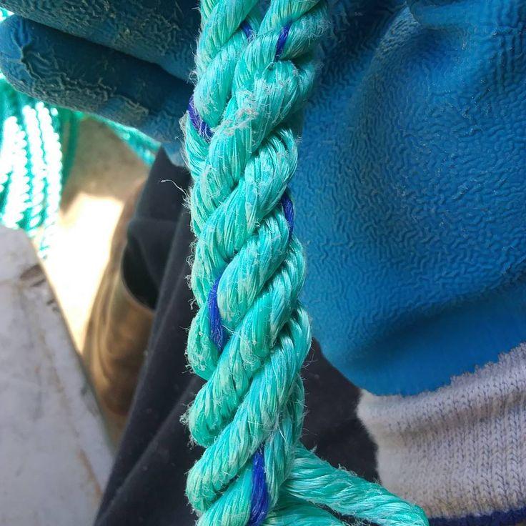 Splicing rope together! I love it . #splicing #rope #Oregon #crabgear #crabbing #crabs #pots #ocean