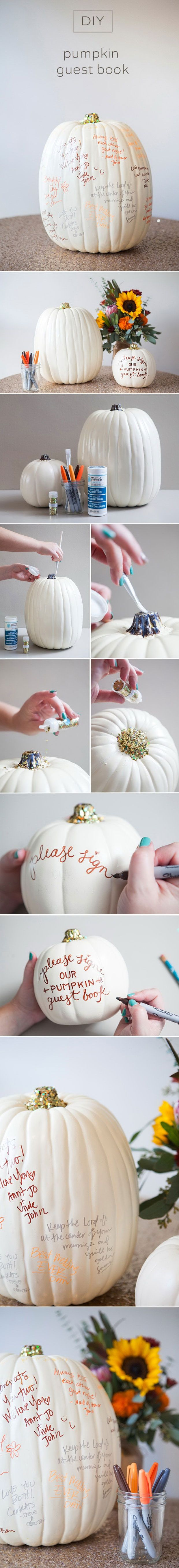 DIY wedding pumpkin guest book ideas for fall