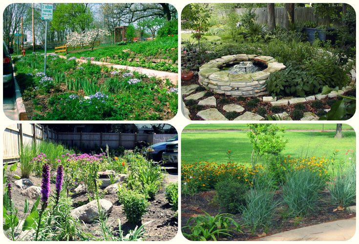 17 Best images about Rain Gardens and Drainage Solutions