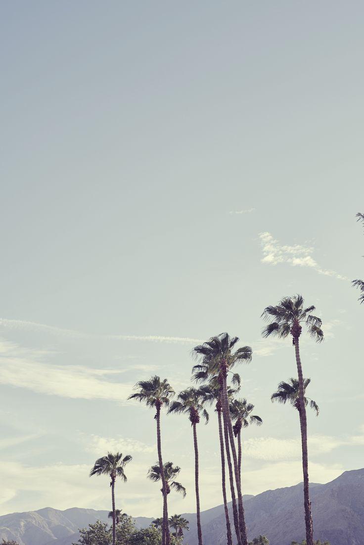 84 best Palm Springs images on Pinterest   Palm desert california ...