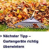 Pflanzen überwintern https://www.aldi-sued.de/de/ratgeber/gartenratgeber/blumen-straeucher-und-hecken/pflanzen-richtig-ueberwintern/