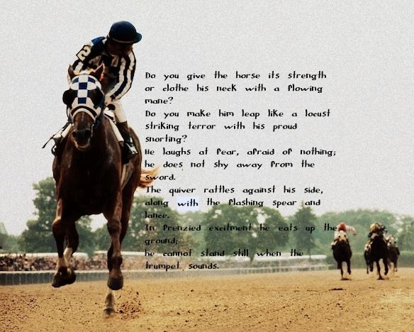 secretariat❤️gave me chills while reading. RIP secretariat❤️