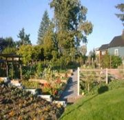 Growing food in Vancouver