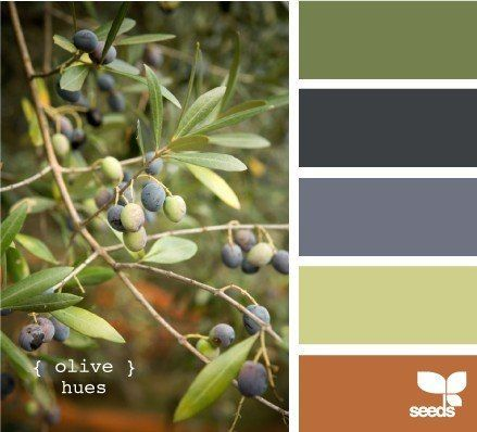 Olive hues, green shades, green and blue, grey, orange colors