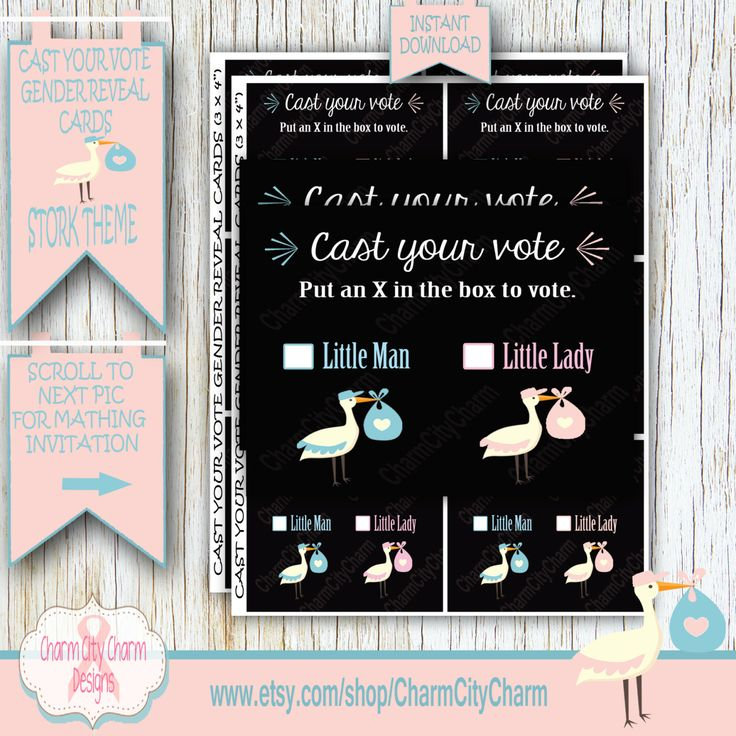 baby shower invitation wording for bringing diapers%0A Gender Reveal Baby Shower Invitation  Stork Gender Reveal  Gender Reveal  Shower  Boy or Girl