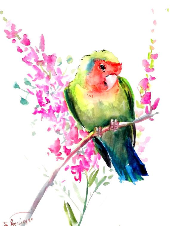 Lovebird original watercolor painting 12 X 9 in by ORIGINALONLY, $25.00