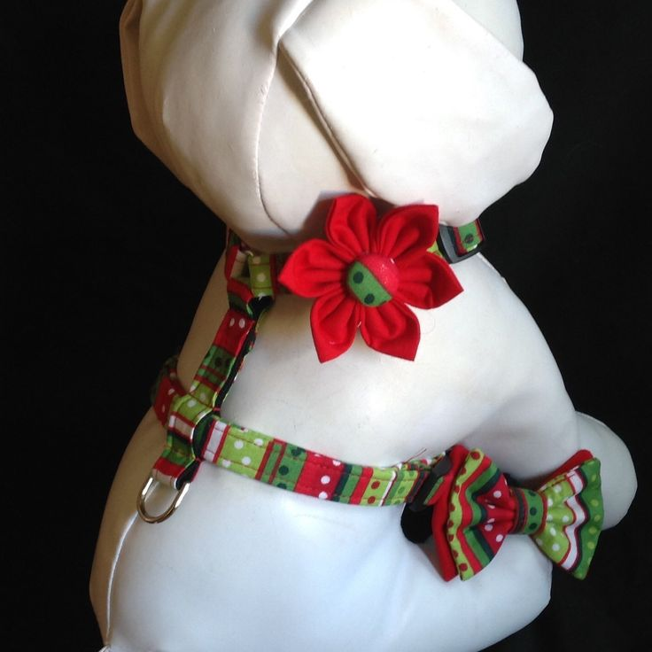 1000 Ideas About Dog Harness On Pinterest Dog Dresses