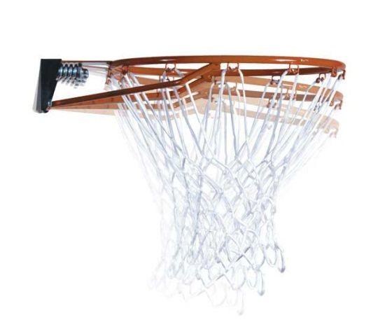 Lifetime Portable Basketball Hoop - 51550 Shatter Proof Courtside Basketball System - 48-inch Backboard