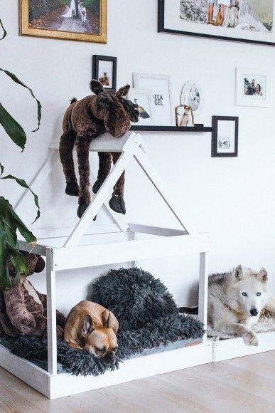 diy hundeh tte f r die wohnung selber bauen deko pinterest hunde hundebett und haustiere. Black Bedroom Furniture Sets. Home Design Ideas