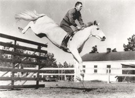 Harry De Leyer riding Snowman without tack like a boss