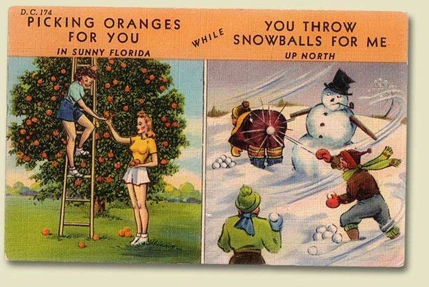 And of course, you can gloat to your northern relatives about all of the above. | 23 Reasons Christmas In Florida Is Actually The Best