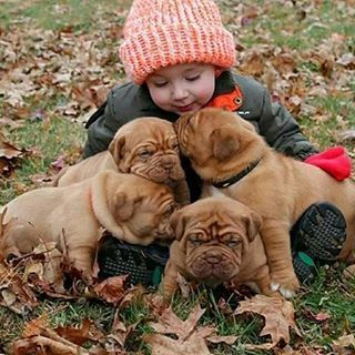 All very sweet #About_animalslife