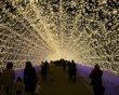'Tunnel of lights' dazzles spectators at Japan's Nabana no Sato botanical garden on the island of Nagashima in Kuwana, visitors can walk through beautiful tunnels wrapped in millions of tiny LED lights. The effect, as the photos show, is dazzling.