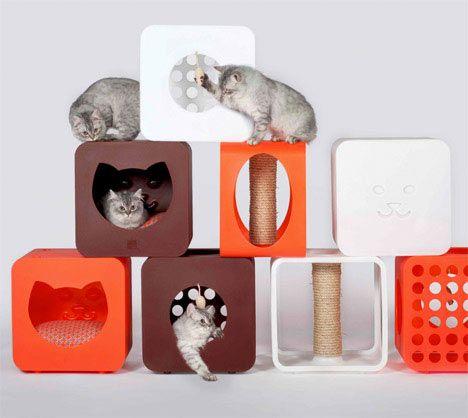Casetta e graffiatoio per gatti, la moderna Kitty Casa