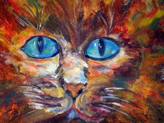 Macska | Képek / rajzok