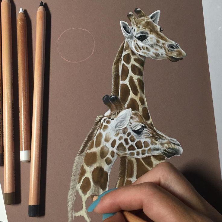 Trying out these pastel pencils for the first time! May be a bit of a learning…