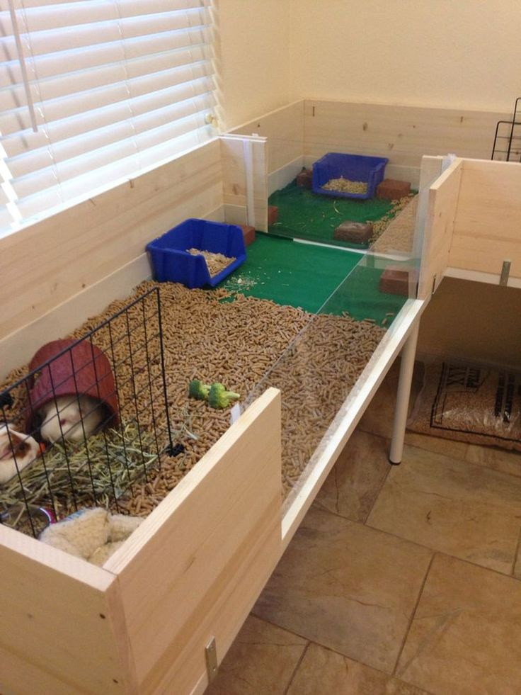 Best 25 guinea pig cages ideas on pinterest cages for for Free guinea pig hutch