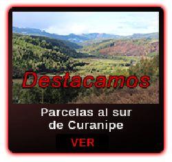 Parcelas en Venta en Cardonal, Curanipe. Revisa estas increibles Parcelas en http://www.farocarranza.cl