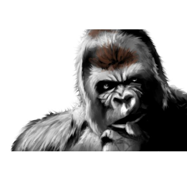 Old #Sketch done for my old #website - #photoshop #painting #illustration #gorilla