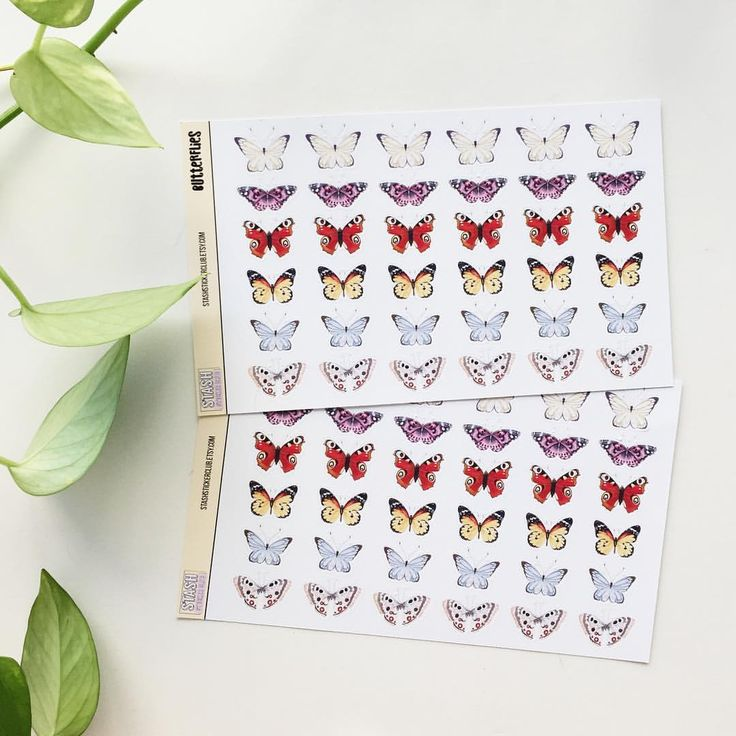"13 Likes, 2 Comments - Jessie Short (@jessieshort_) on Instagram: ""Making more lil butterfly sticker sheets for my etsy store (aka procrastinating from data analysis…"""