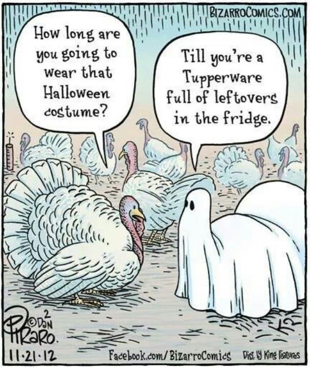 Laugh Your Way With Best Thanksgiving Jokes of the Day