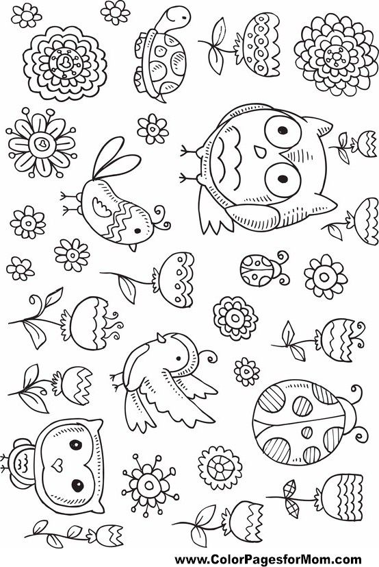 1000+ ideas about Owl Coloring Pages on Pinterest | Coloring Pages ...