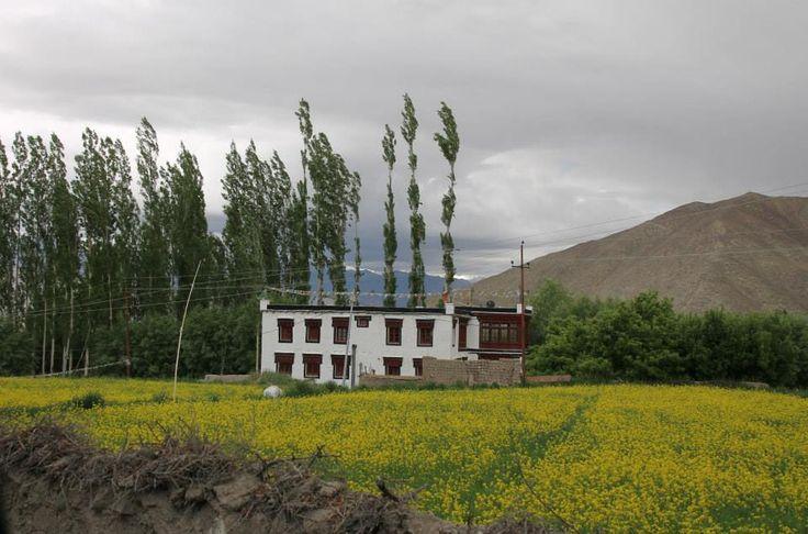 Magnificent Lakakh, #India - Ladakhi home #Travel
