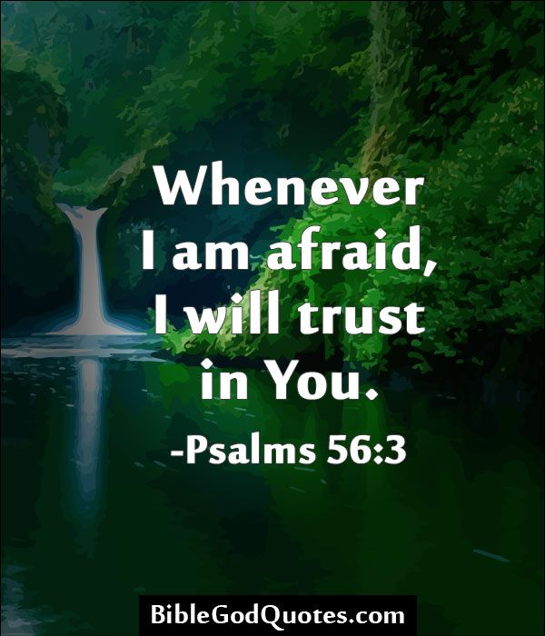 Whenever I am afraid, I will trust in You. -Psalms 56:3  BibleGodQuotes.com