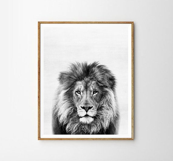Lion print, Nursery, Animal, Kids room, Modern art, Wall decor, Digital art, Printable, Digital poster Instant Download 8x10, 11x14, 16x20