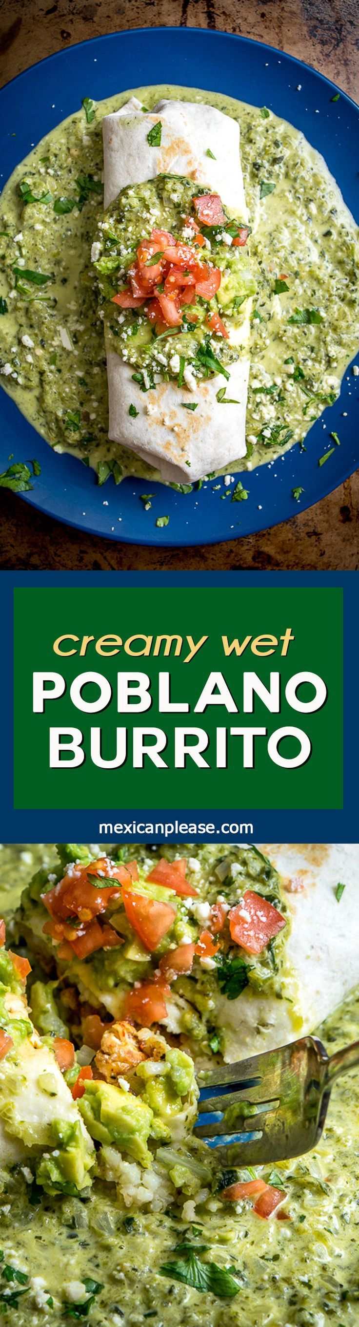 Think of this as the ultimate comfort food.  A chicken guacamole burrito swimming in a creamy, goopy poblano sauce with otherworldly flavor.  Don't forget to roast the poblano peppers.  So good!  http://mexicanplease.com
