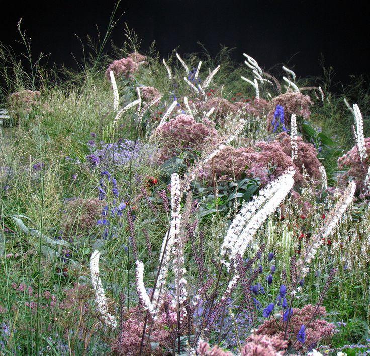 Piet Oudolf ist ein preisgekrönter Garten-Designer aus den Niederlanden...Und! Er hat wohl jede dieser Auszeichnungen verdient und lässt den ein oder anderen Landschaftsarchitekturzyniker das Haupt in Demut senken.