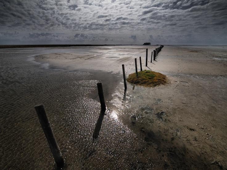 NP tideland  By: Dirk Juergensen