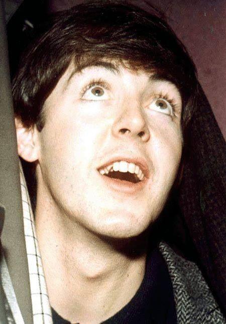 Best 98 Paul McCartney 3 Images On Pinterest